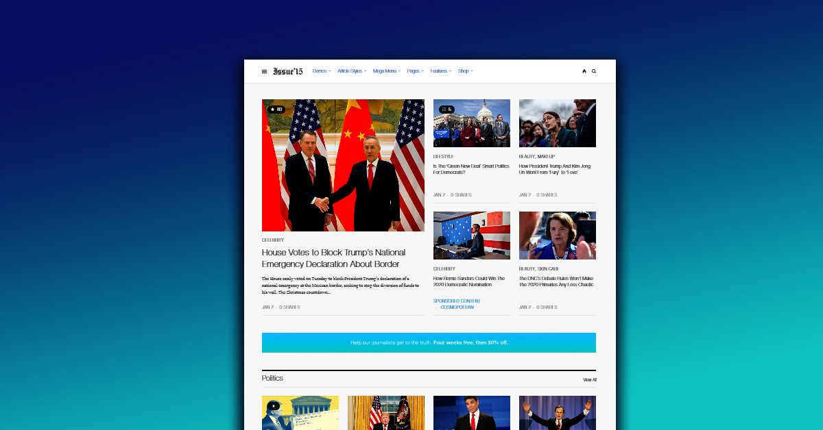 WordPress Newspaper Themes The Issue